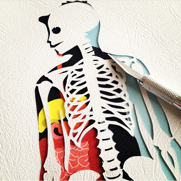 http://helenedruvert.net/files/gimgs/68_anatomy-cut-out.jpg